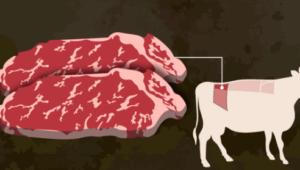 チャパグリランプ肉
